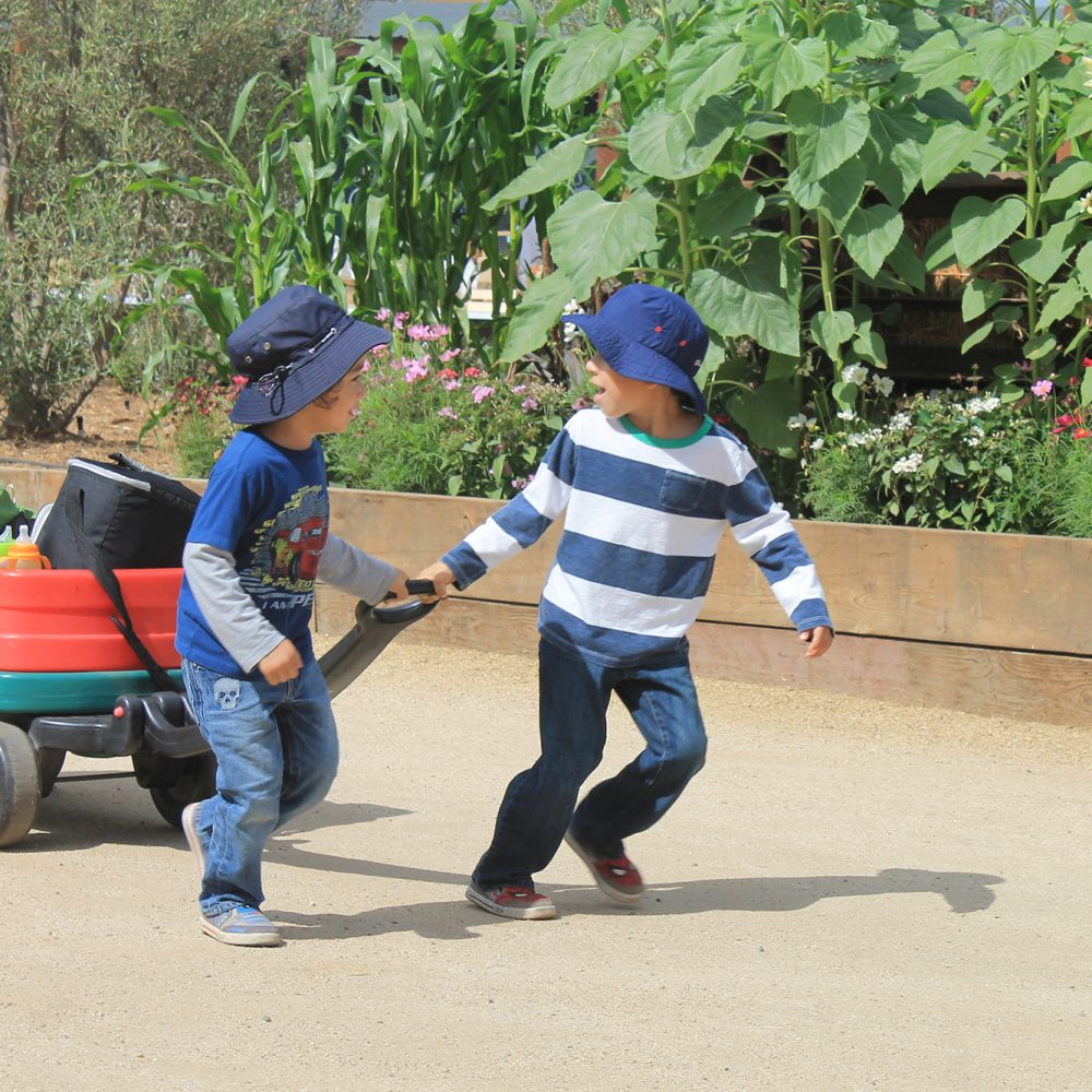 Children enjoying The Farm at the LA County Fairgrounds